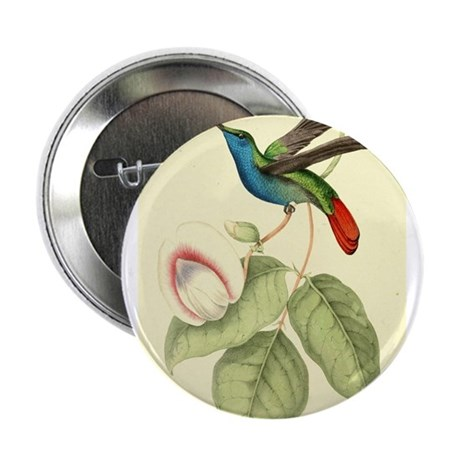 """Hummingbird (Sickle-Winged) 2.25"""" Button"""