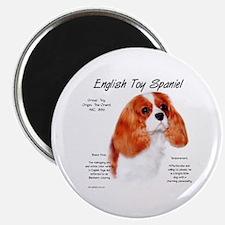 Blenheim English Toy Spaniel Magnet