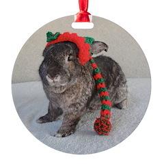 Bunny Holiday Ornament Ornament