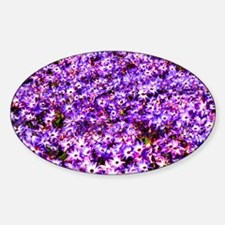 Purple Decal
