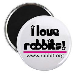 I love Rabbits! Magnet