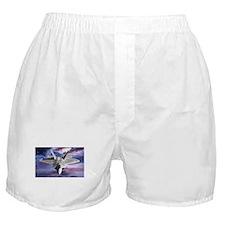Raptor Boxer Shorts