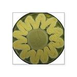 Sunflower Square Sticker 3