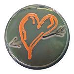 Heart Round Car Magnet
