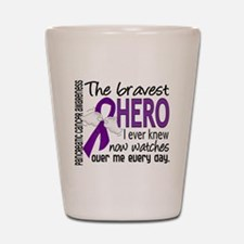 Bravest Hero I Knew Pancreatic Cancer Shot Glass