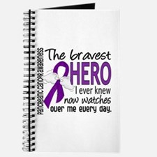 Bravest Hero I Knew Pancreatic Cancer Journal