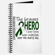 Bravest Hero I Knew Liver Disease Journal