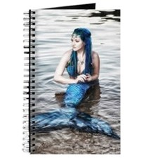 Cool Fairie Journal