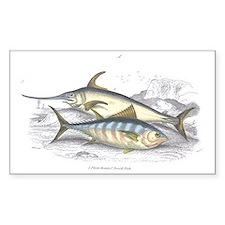 Bonito and Swordfish Fish Rectangle Decal
