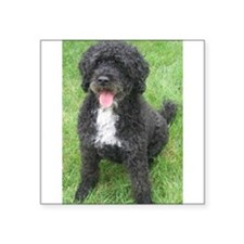 "Portuguese Waterdog Square Sticker 3"" x 3"""
