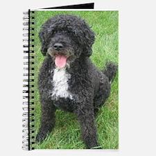Portuguese Waterdog Journal