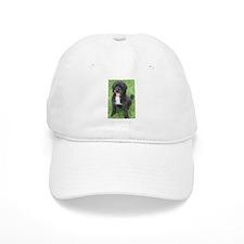 Portuguese Waterdog Baseball Cap