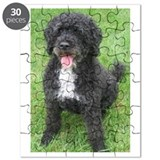Portuguese water dog Puzzles