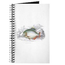 Piranha Fish Journal