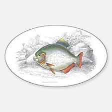 Piranha Fish Oval Decal