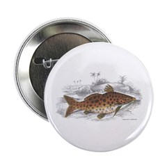 Catfish Fish Button