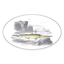 Swordfish Fish Oval Decal