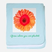 grow where youre planted baby blanket