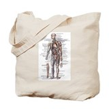 Anatomy Canvas Tote Bag