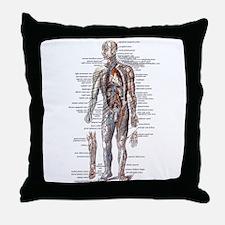 Anatomy of the Human Body Throw Pillow