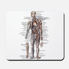 Anatomy of the Human Body Mousepad