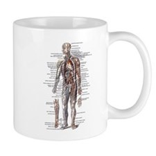 Anatomy of the Human Body Small Mugs