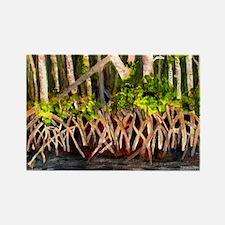Mangrove Rectangle Magnet