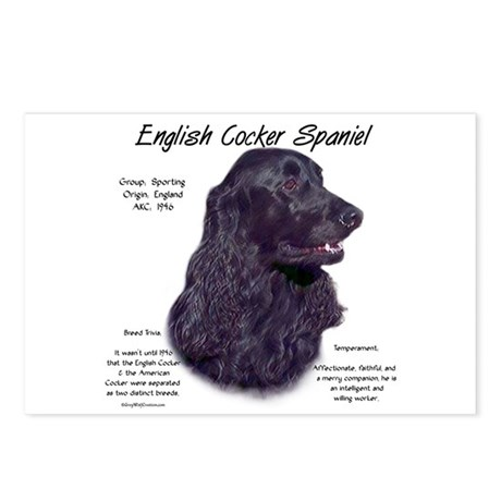 English Cocker (black) Postcards (Package of 8)
