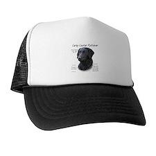 Curly-Coated Retriever Trucker Hat