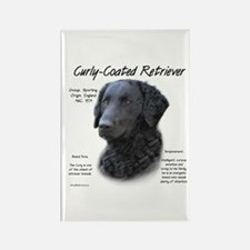 Curly-Coated Retriever Rectangle Magnet