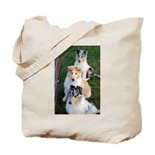 Collie Trio.png Tote Bag