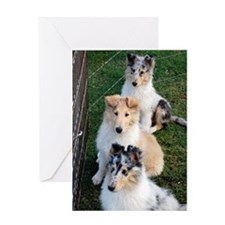Collie Trio.png Greeting Card