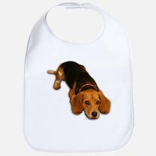 Beagle 3 Bib