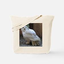 Cute Snowy owl Tote Bag