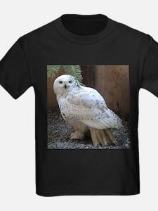 Cute White owl T