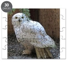 Cute Snowy owl Puzzle