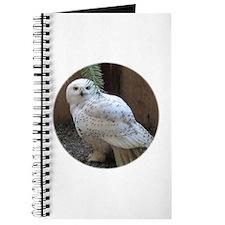 Comox Journal