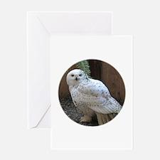 Snowy Owl Round Greeting Cards