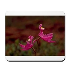 Pink Calopogon Mousepad