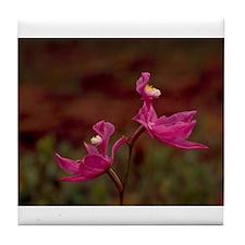 Pink Calopogon Tile Coaster