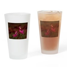 Pink Calopogon Drinking Glass