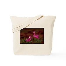 Pink Calopogon Tote Bag