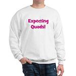 Expecting Quads! Sweatshirt