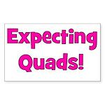 Expecting Quads! Rectangle Sticker