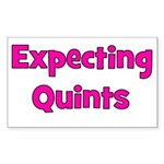 Expecting Quints! Rectangle Sticker
