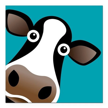 """Moo Cow! Square Car Magnet 3"""" x 3"""""""