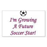 Future Soccer Star - Pink Rectangle Sticker