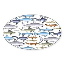 School of Sharks 1 Decal