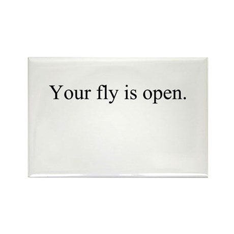 Your fly is open. Rectangle Magnet (10 pack)
