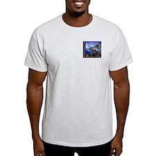 Ash Grey Alyeska Logo T-Shirt